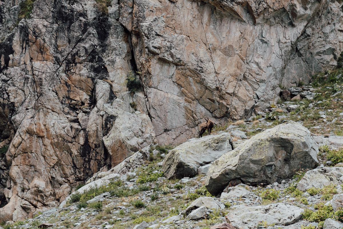 glacier-noir-hautes-alpes-42