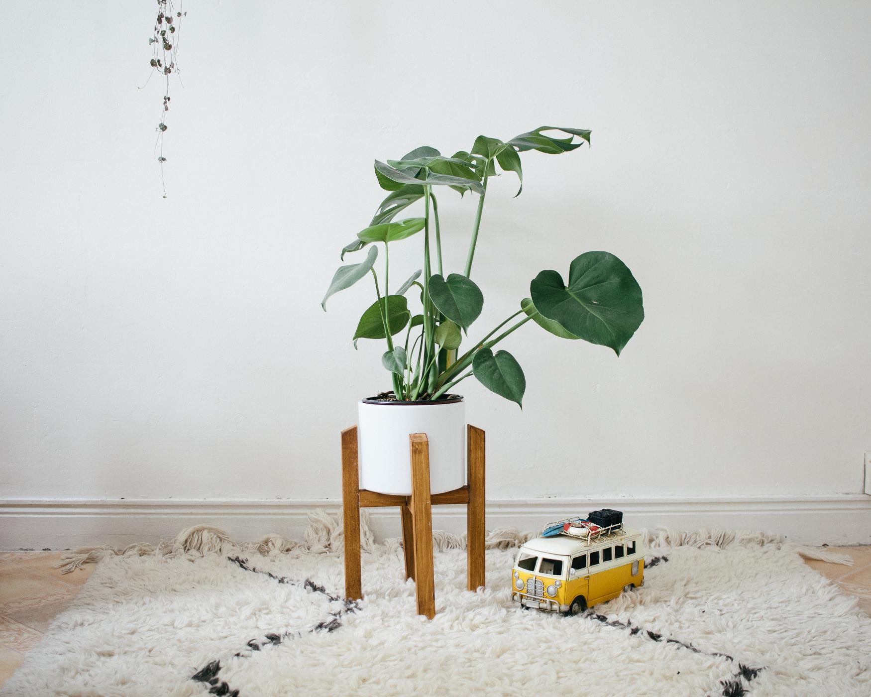 Diy Un Pr Sentoir Pour Plantes Carnet De Printemps