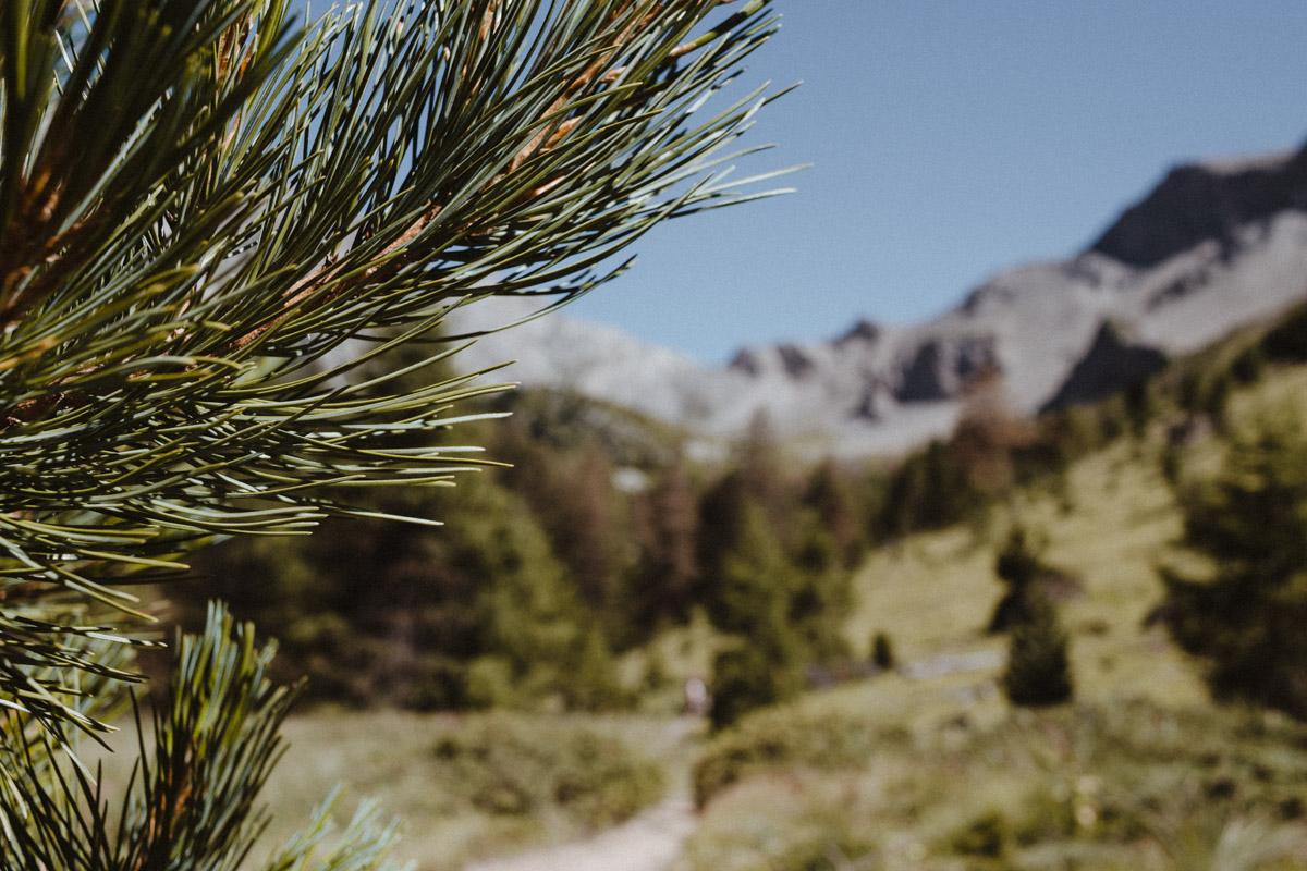 lac-sainte-anne-hautes-alpes-39
