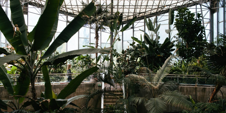 Carnet de printemps petites aventures du quotidien - Jardin des plantes aix les bains ...