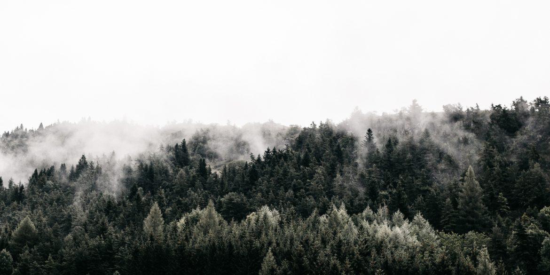 Le Vercors en été, itinéraire d'une semaine au cœur du massif