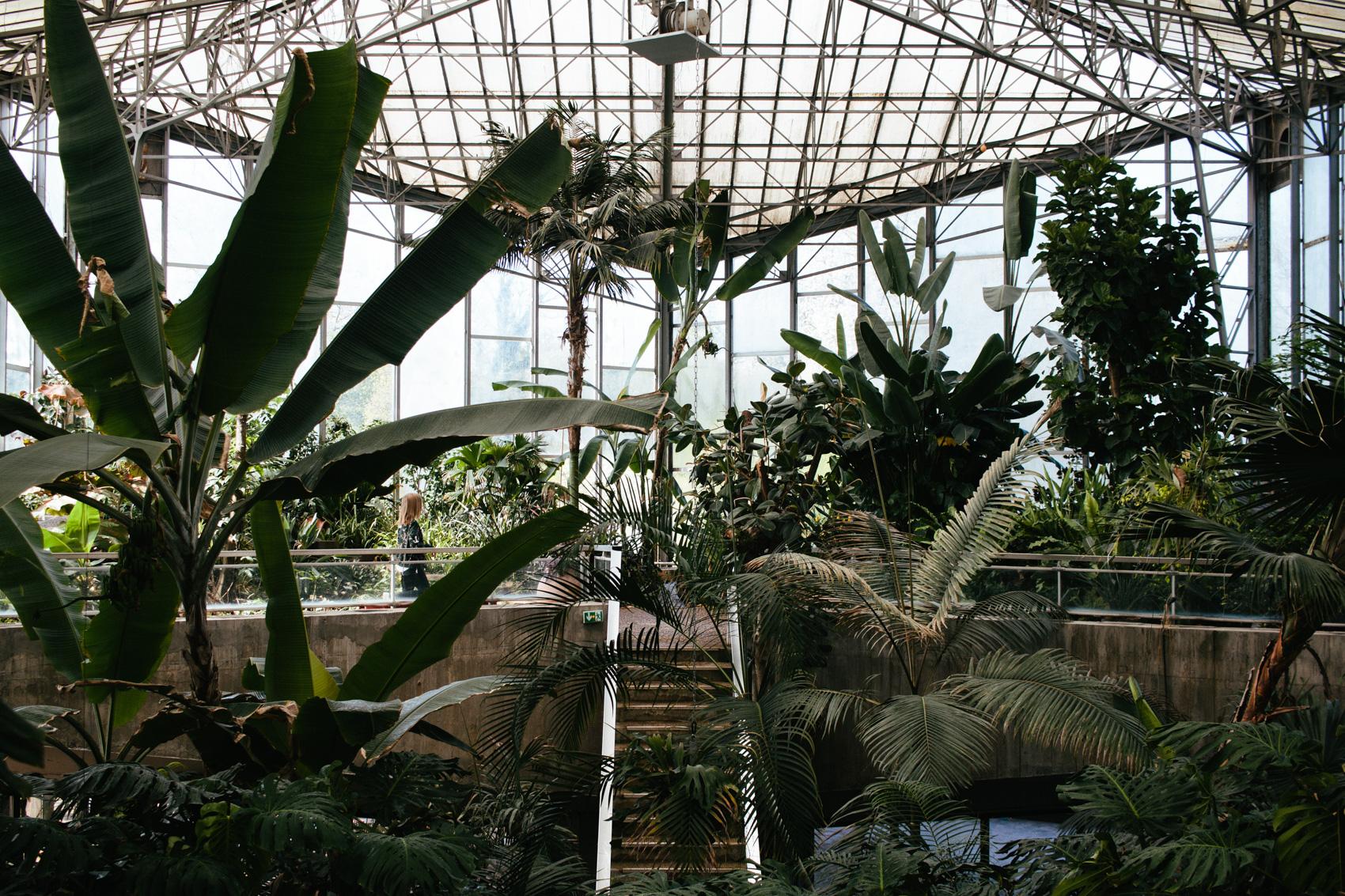 Potager 3 Etages Botanic le* jardin *des* plantes - *lille* - carnet de printemps